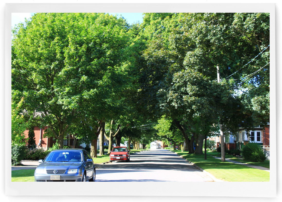 Waterloo, West acres neighbourhood in Guelph, ON